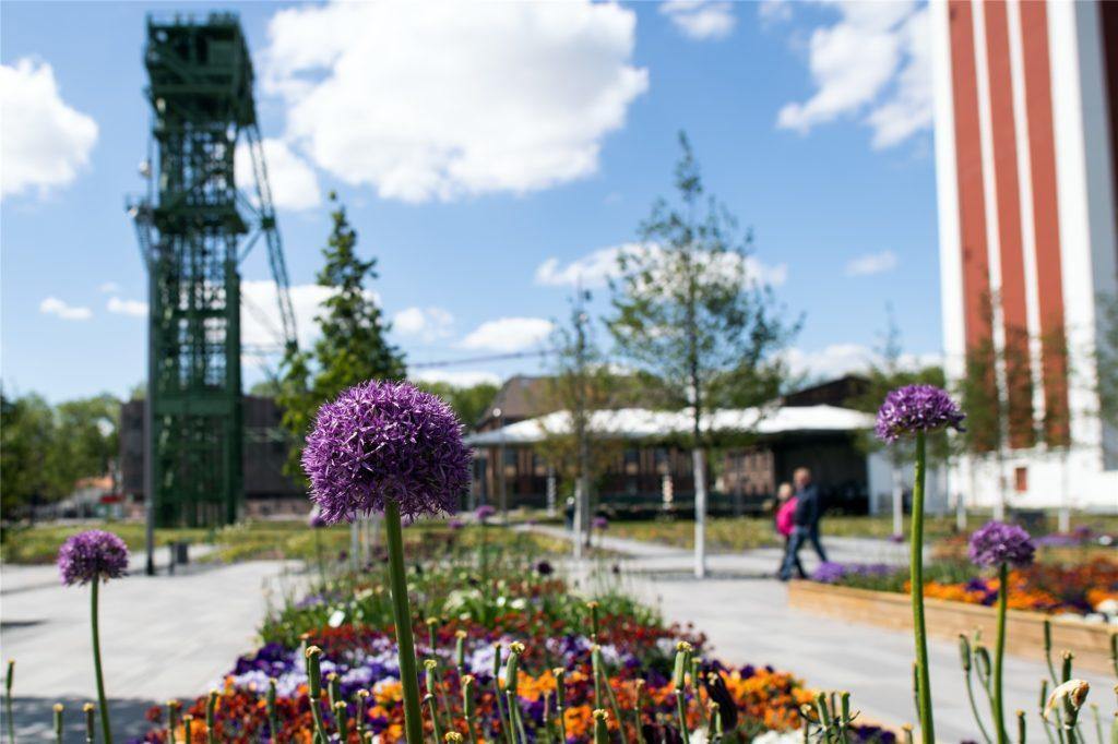 Die diesjährige Landesgartenschau in Kamp-Lindfort ist eine der wenigen Veranstaltungen, die nicht abgesagt wurden.