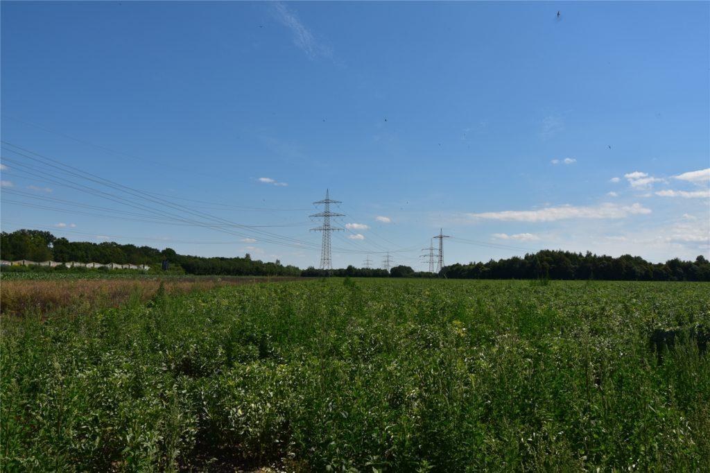 Ganz links ist der im Jahr 2000 fertiggestellte Teil der L663n zu sehen. Auf Höhe der Strommasten soll die Brackeler Straße weiter verlängert werden.