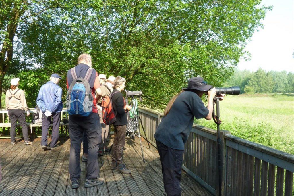 Viele Wanderer beobachten das Natur-Geschehen an den Aussichtspunkten.