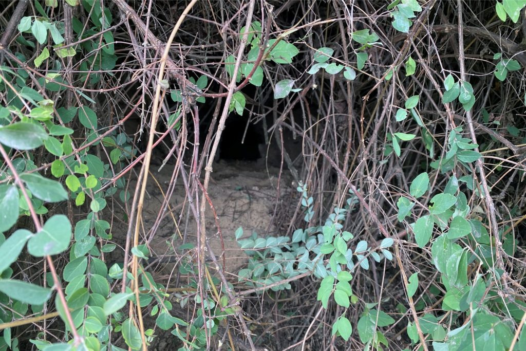 In diesem Fuchsbau war Dackeldame Flocke verschwunden.