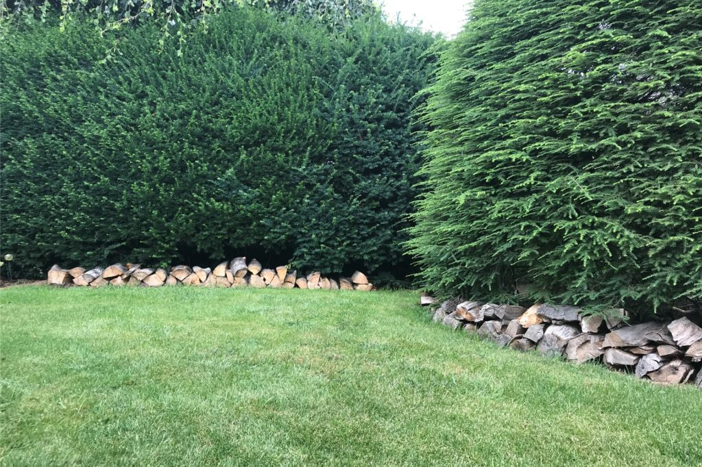 Die Holzscheite schützen die Bäume.