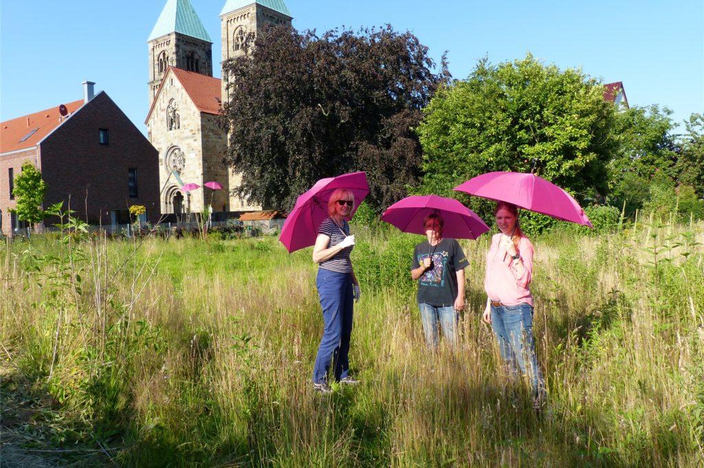 Pastors Garten im Jahr 2014. An diesem Ort wird bald der Dahliengarten entstehen.
