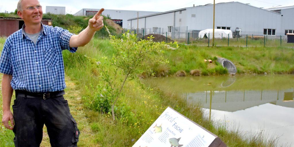 Jürgen Gesing, Jugendleiter beim Fischereiverein Gemen-Burlo-Gelsenkirchen, hatte vor ein paar Jahren die Idee für das Biotop rund um das Regenrückhaltebecken. Mit vielen Helfern hat er sie umgesetzt. Dafür bekam er jetzt den ersten Platz beim Heimatpreis – dotiert mit immerhin 3000 Euro.