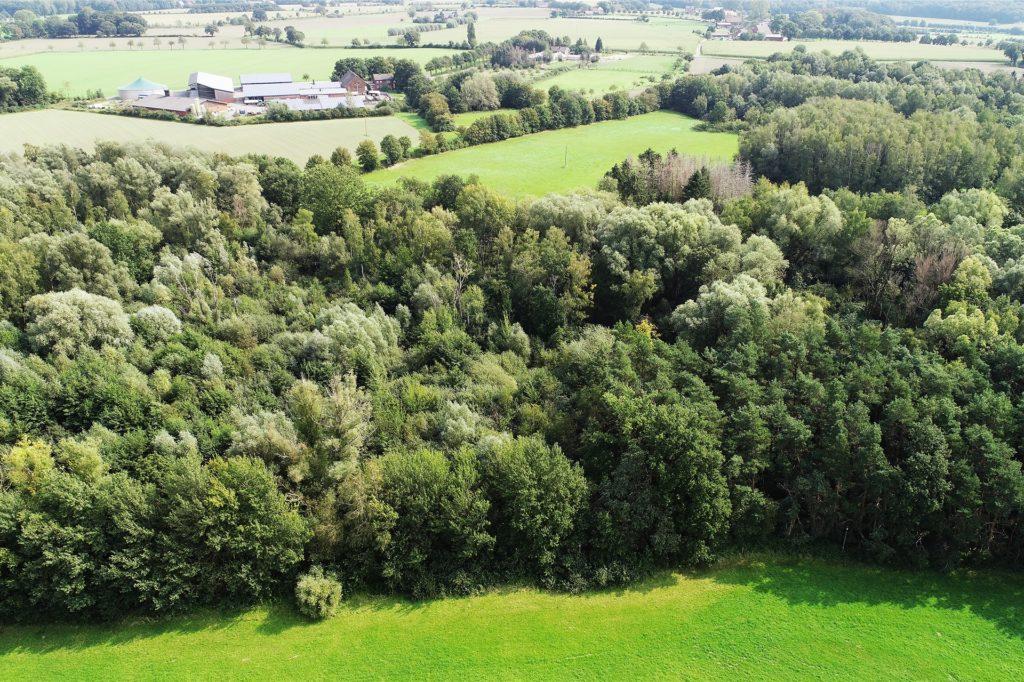 Das Naturschutzgebiet Netteberge - aus der Luft.