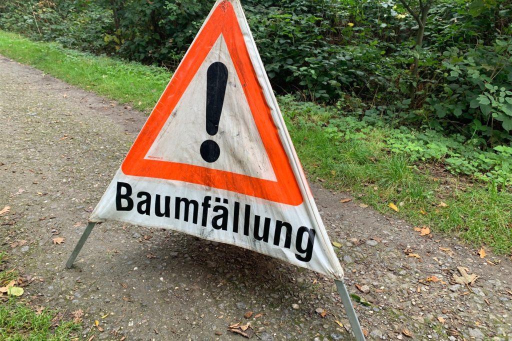 Die Forstarbeiten dauern bis Mittwoch. Für Spaziergänger gibt es keine Einschränkungen.