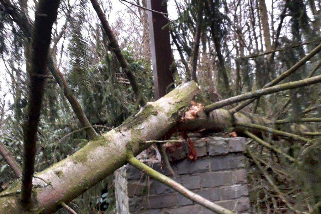 Der Baumstamm schlug auch eine Ecke aus dem Granitsockel des Kreuzes.