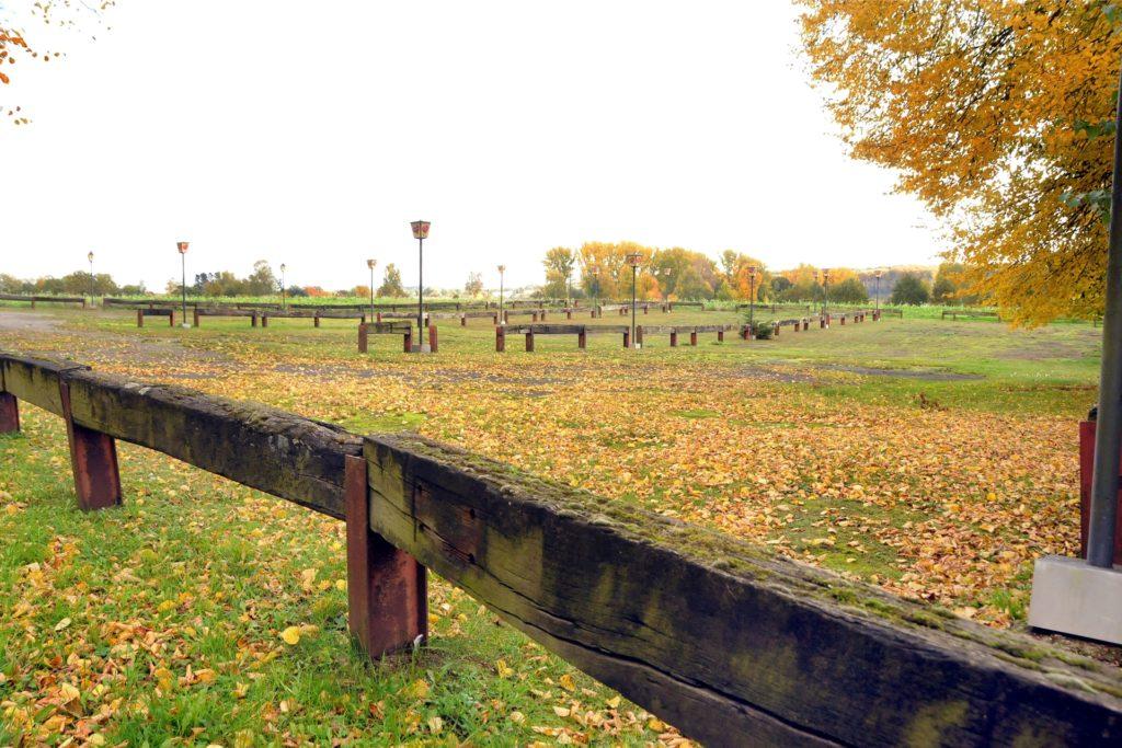 Der große Parkplatz am For You will auch während der Corona-bedingten Schließzeit gepflegt werden - vor allem, wenn jetzt im Herbst massenhaft die Blätter von den Bäumen fallen.