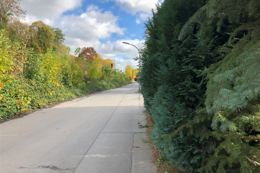 Die Straße Webershohl ist eine schmale Straße ohne Gehwege oder Randstreifen. Wer von einem der Grundstücke kommt, steht direkt auf der Fahrbahn