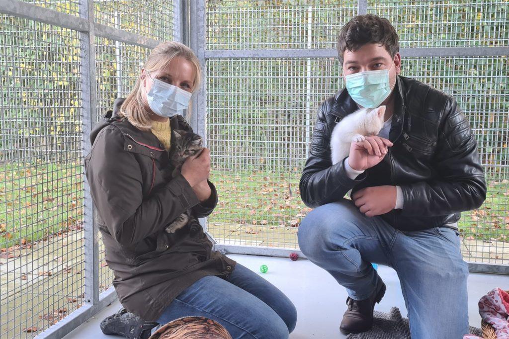Tierheimleiterin Julia Rehermann hat Redakteur Till Goerke durch das Tierheim geführt. Die Katzen Champ (r.) und Cairo sind erfreulicherweise bereits vermittelt worden.