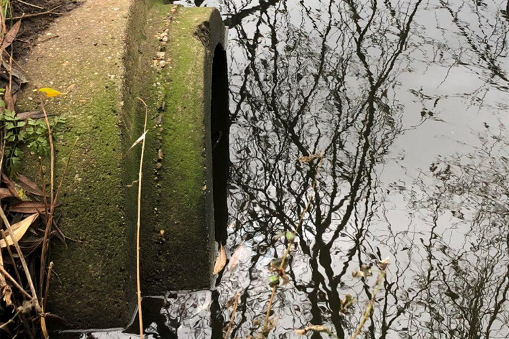 Aus diesem Rohr fließt Wasser aus dem Industrie- und Gewerbegebiet – dabei handelt es sich um das gesammelte Regenwasser. Fehleinleitungen oder Unfälle können Grund dafür sein, dass über die Regenwasserkanäle verschmutztes Wasser in die Schlinge gerät.