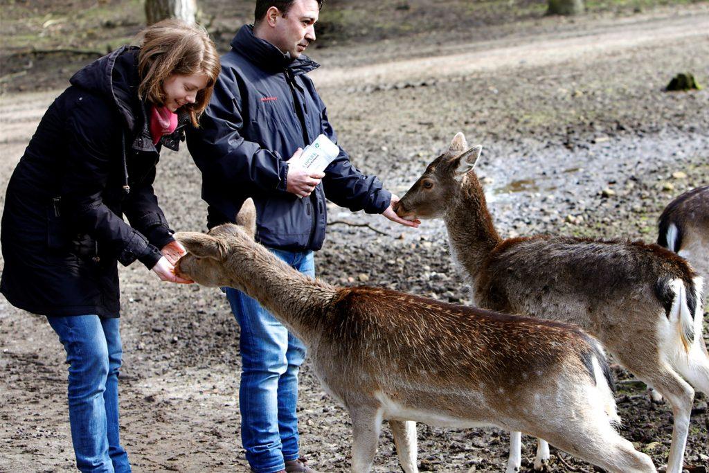 Die Tiere im Wildpark vermissen die Fütterungen durch die Besuche