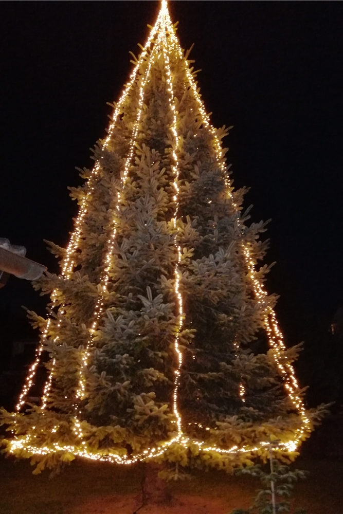 Und so sieht Georg Jozwiaks Weihnachtsbaum aus, wenn die Lichterkette brennt