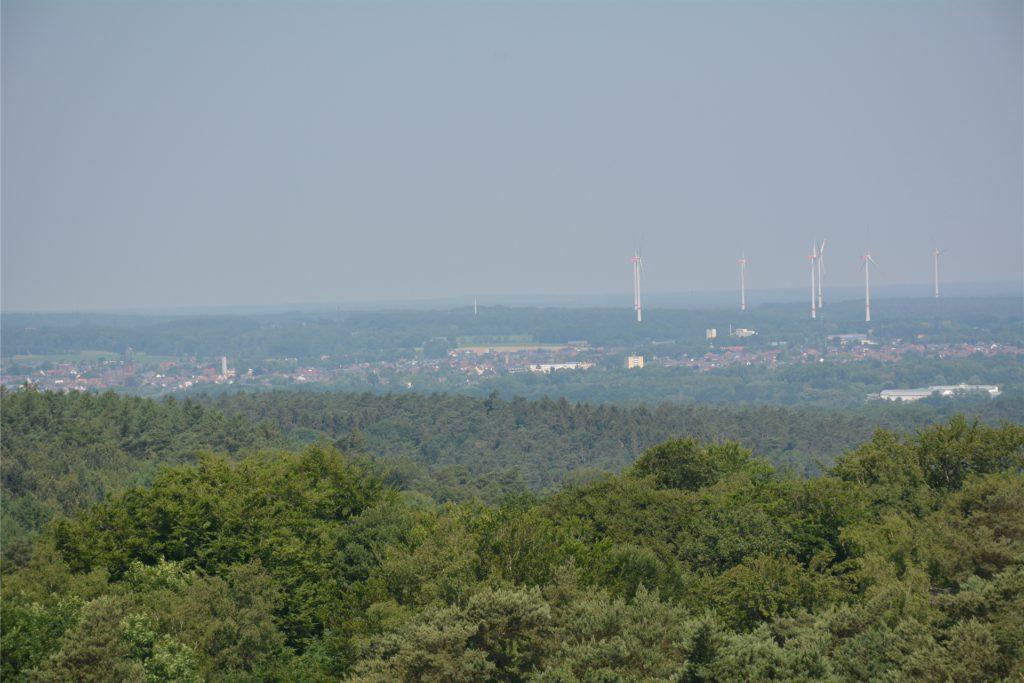 Die Haard ist ein über 5000 Hektar großes, hügeliges Waldgebiet im Norden des Ruhrgebiets.