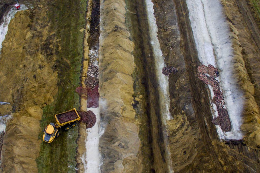Blick auf die Massengräber auf dem Übungsplatz des Jydske-Drachenregiments in Holstebro.