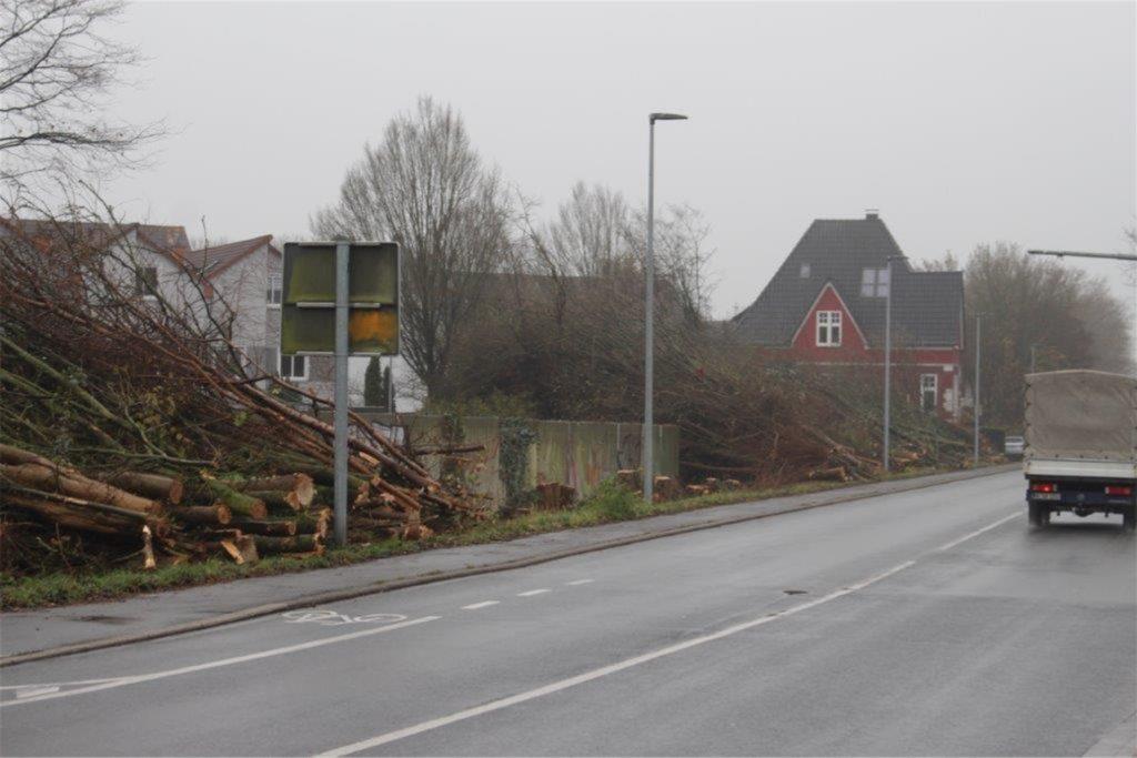 An der Hagener Straße lagen die Bäume am Dienstag noch am Straßenrand. Sie sollen aber bald abtransportiert werden.