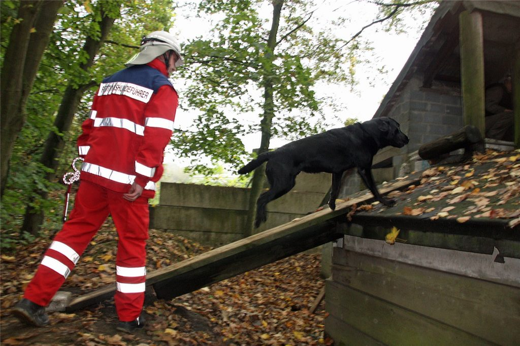 """Beim Training auf dem Gelände in Coesfeld: Dort gibt es genügend Gebäude und """"Trümmer"""