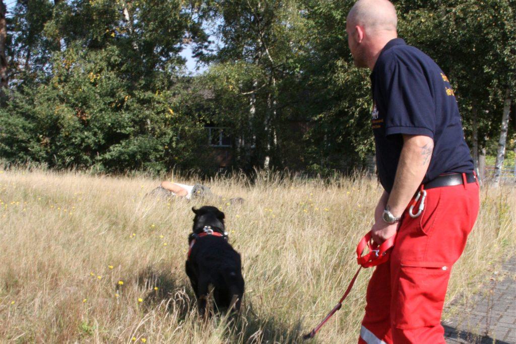 Eine Szene aus dem Training im Jahr 2010: Hier hat sich ein Mensch im Gelände versteckt - Rettungshund Bilbo hat ihn entdeckt. Durch Bellen hat er später angezeigt, dass er jemanden gefunden hat.