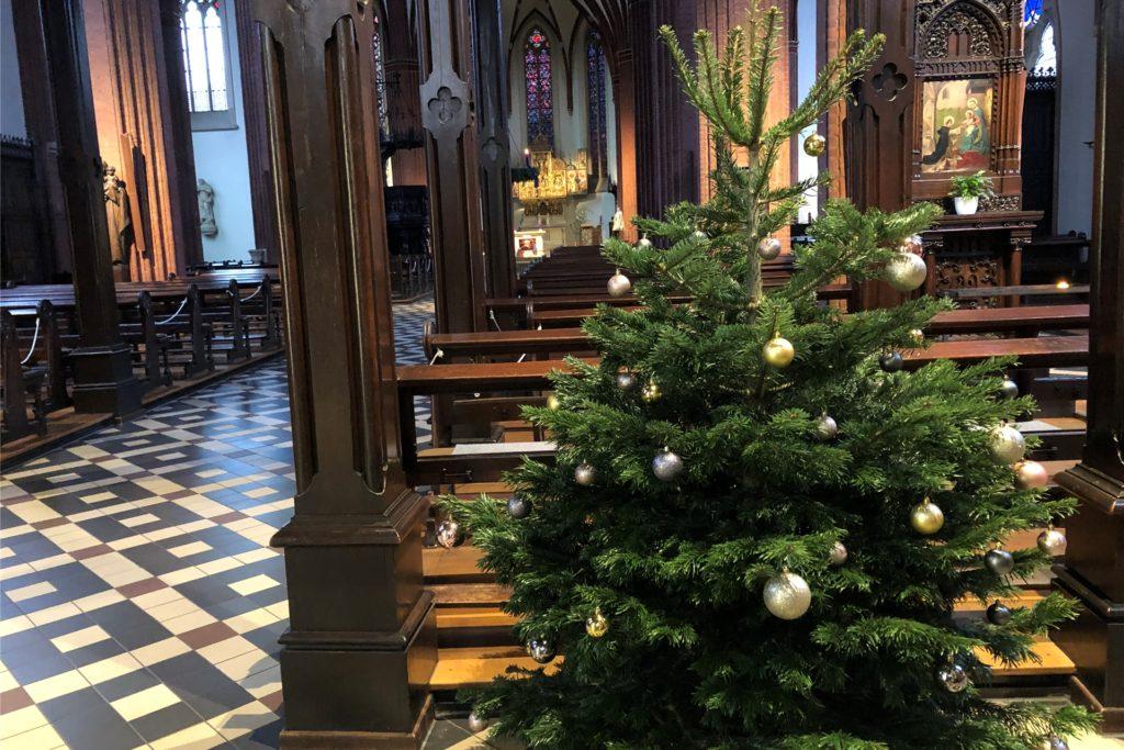 Der Wünschebaum stand in der Sixtuskirche.