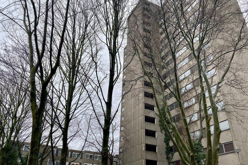 Die Bäume an der Nordseite des Hochhauses an der Kielstraße müssen gefällt werden.