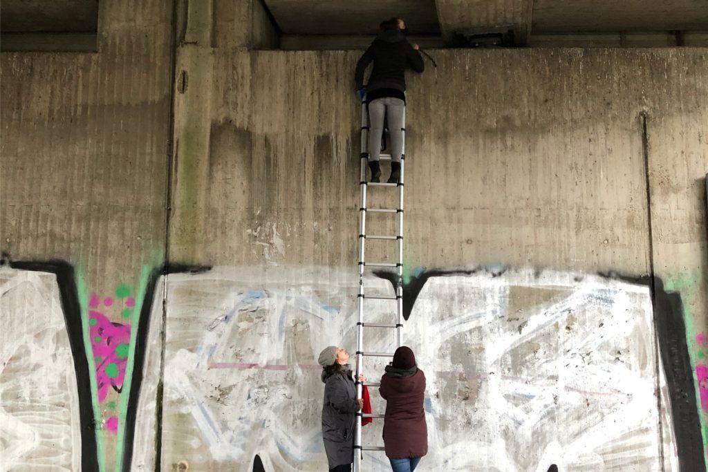 Mithilfe einer langen Leiter konnten Mitglieder der Ruhrpottmöwen an einer Autobahnbrücke in Castrop-Rauxel Eier austauschen.