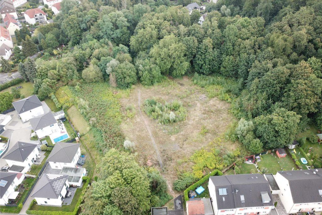 So sah es hier im Sommer/Herbst 2019 aus. Die Fläche war von Sträuchern, Stauden und Gräsern bewachsen und wurde gern für Hunde-Spaziergänge genutzt.