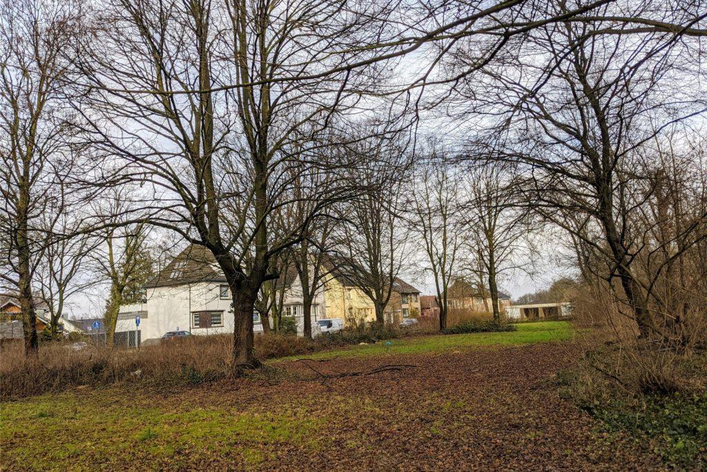Der neue Spielplatz an der Marienstraße soll gegenüber von Lunemann`s Wirtshaus auf einer schon früher mal als Spielplatz genutzten Grünfläche entstehen.