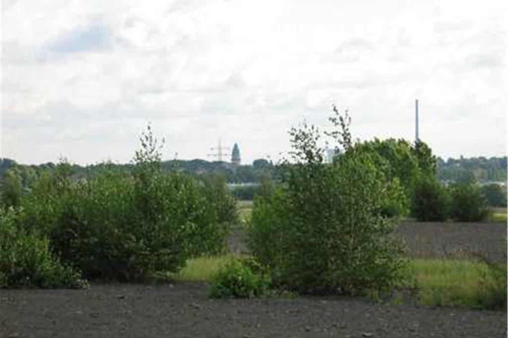 """Blick von der Halde """"Groppenbruch"""" auf Brambauer: Der Naturraum ist planerisch ein mögliches Gewerbegebiet."""