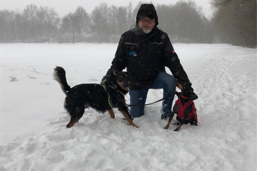 Einige Werner sind am Montagmittag in der Stadt unterwegs - etwa zu einem Spaziergang mit den Hunden.