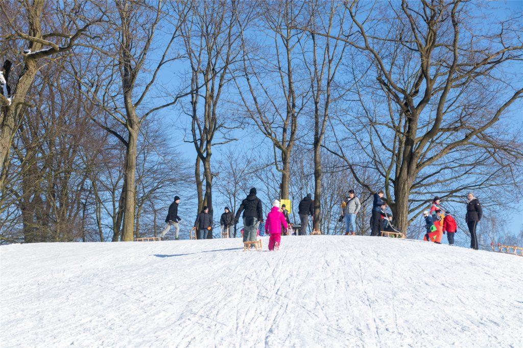 Buntes Wintersporttreiben auf dem Losberg am Donnerstagnachmittag.