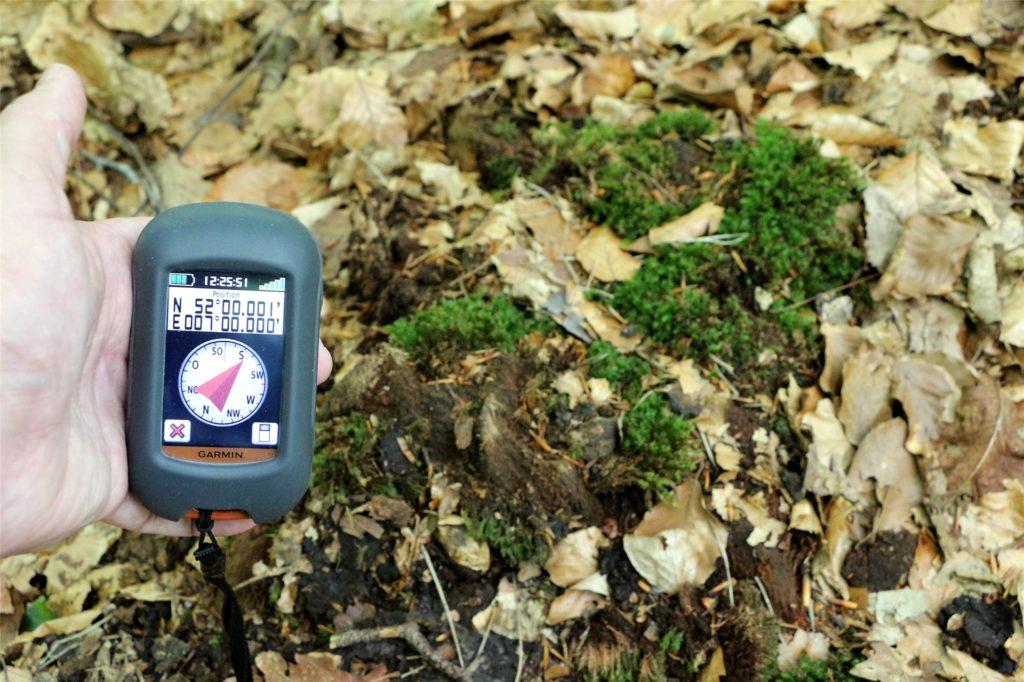 Das könnte der Schnittpunkt des Längen- und Breitengrads in einem Wald in Estern sein: ein alter Baumstumpf.