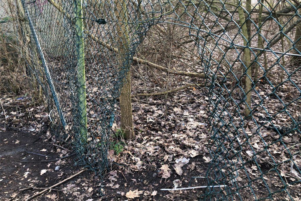 Ist der Zaun rund um das Zechengelände geflickt, wird er an anderer Stelle - wie hier - wieder geöffnet.