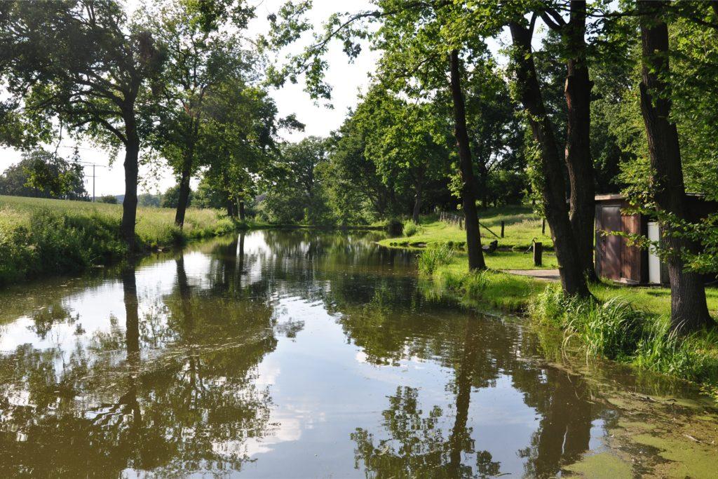 Der ASV Bork erhält für seinen Teich Fördergelder vom Land. Damit kann er die Staumauer und den Teich sanieren.