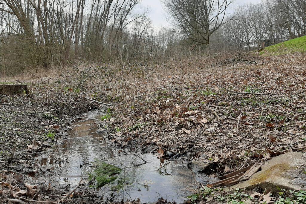 Auf der anderen Seite des Fußweges, der zur Anlage des Vereins führt, plätschert der bereits offen durch die Landschaft.