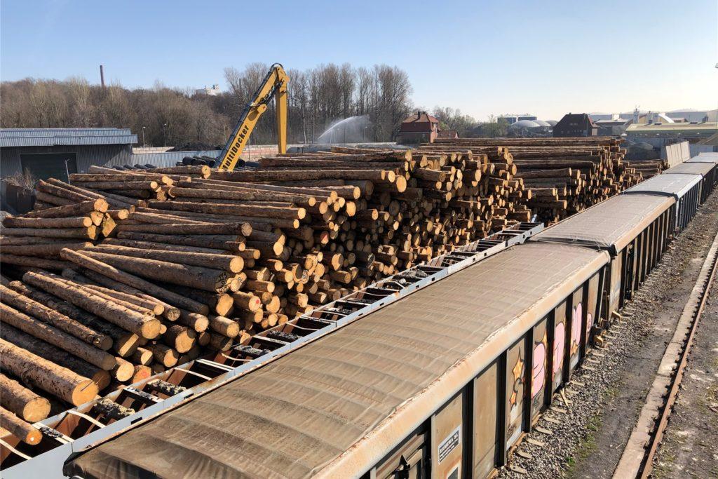 Nicht nur auf Schiffe, auch auf Güterwaggons werden die Baumstämme aus dem Sauerland verladen.