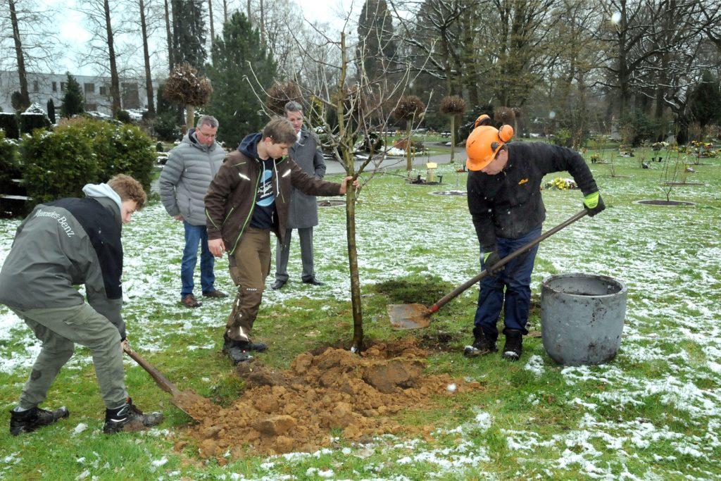 Einen Apfelbaum pflanzte das Team von GaLa Hötter auf dem Evangelischen Friedhof. Im Hintergrund schauen Friedhofsverwalter Frank Schröer (l.) und Lars Kessebrock von der Volksbank Schwerte zu, die den Baum gespendet hat.