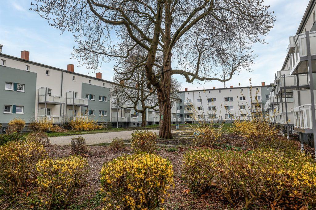 Neue Balkone haben die Wohnungen im Dogewo-Quartier in Huckarde erhalten. Hier ein Blick in den Innenhof zwischen Wispelbreite und Huckarder Bruch.