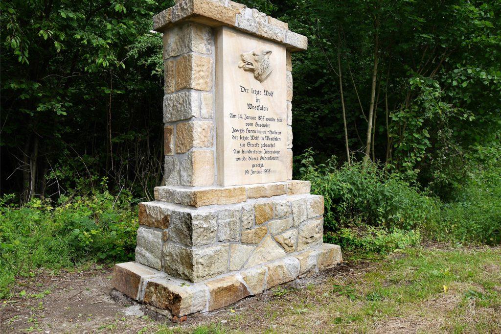 Im Jahre 2017 wurde die Gedenktafel an der B54 zwischen Herbern und Werne restauriert. Sie erinnert an den dort im Jahre 1835 geschossenen letzten Wolf in Westfalen.
