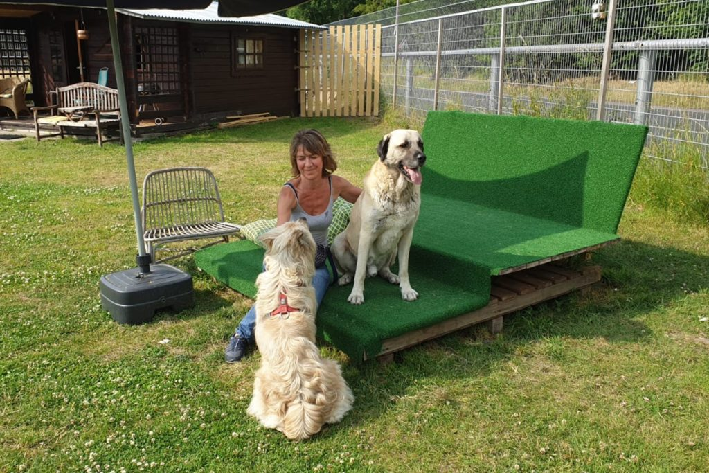 Kristina Rummeld besitzt selbst vier Hunde. Im Tierheim in Castrop-Rauxel kümmert sie sich um weitere 16 Hunde.