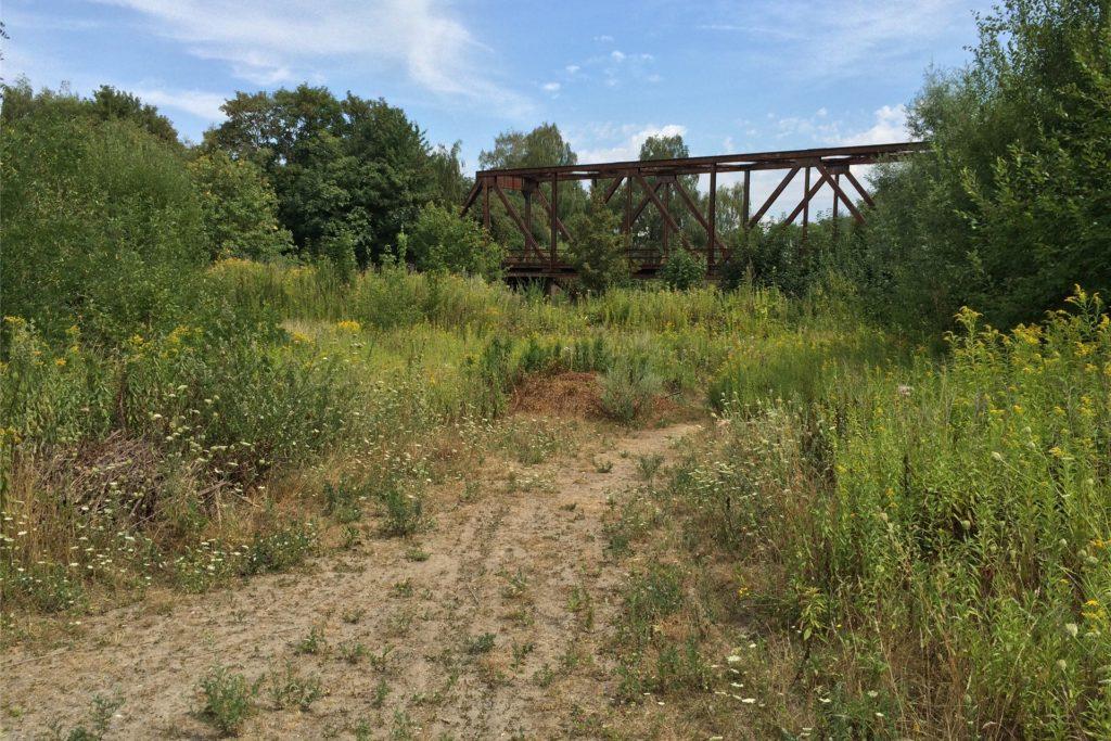 Das Gleisdreieck ist weiter Brachland, das hauptsächlich für die Entsorgung von Grünschnitt und als Hundeklo genutzt wird.