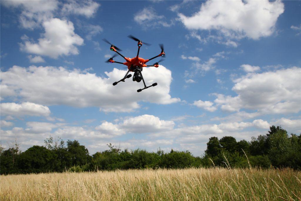 Eine Drohne mit Wärmebildkamera spürt die Kitze in hohen Gras auf.