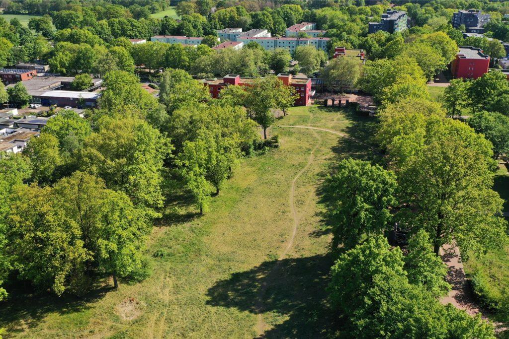 Auf der Dimker Wiese soll ein gemeinschaftliches Wohnprojekt entstehen. Dafür muss der Bebauungsplan geändert werden.