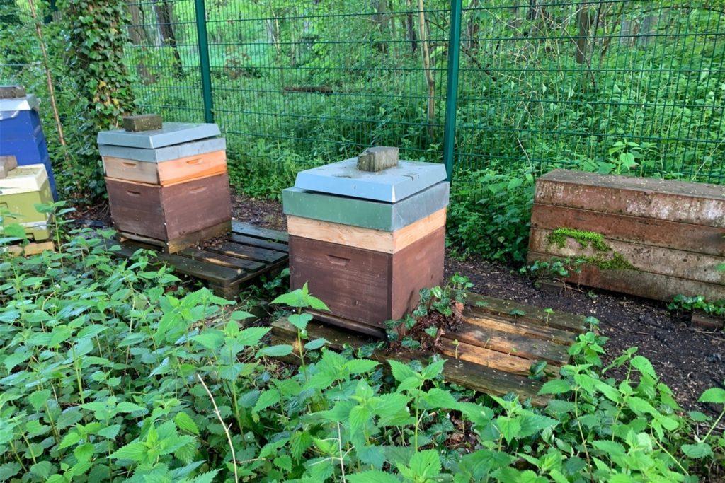 Diese Bienenbeuten hat der Einbrecher stehen gelassen.