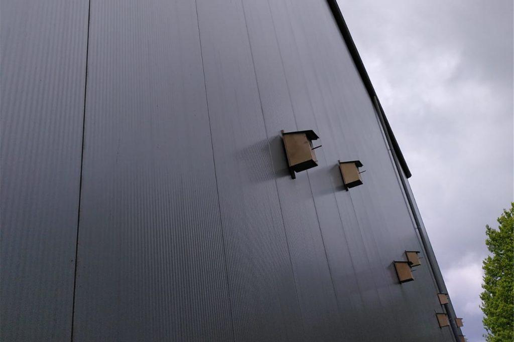 Nistkästen wurden an der Hallen-Rückwand angebracht.