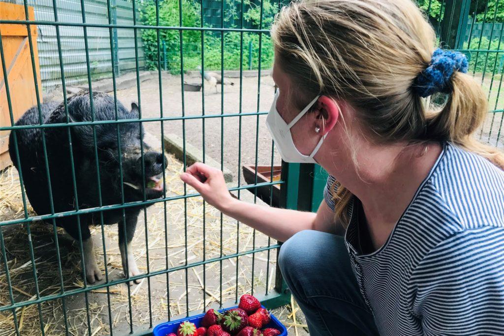 Marina Hinz weiß, was Pumba schmeckt, zum Beispiel frische Erdbeeren.