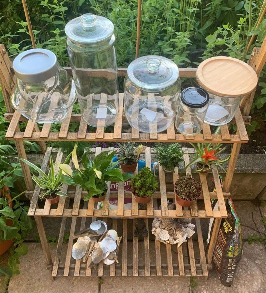 Um einen Flaschengarten selbst anzulegen, braucht es die richtigen Gefäße, Pflanzen, Blumenerde, Drainagematerial wie Blähton und etwas Deko.