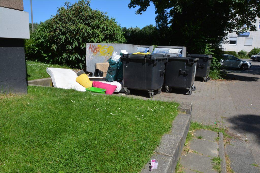 """Die Mülltonnen der Häuser an der Droote nutzen nicht nur die Anwohner, berichtet Hannelore Jacoby: """"So sieht es hier aus, wenn schon aufgeräumt worden ist."""""""
