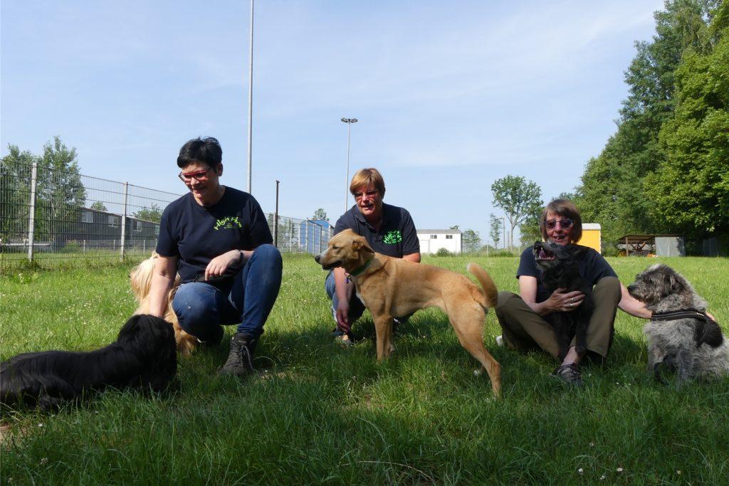 Pause im Schatten: Heidrun Weiser, Heike Kirsch und Petra Pliquet (v.l.) von Hundeverein