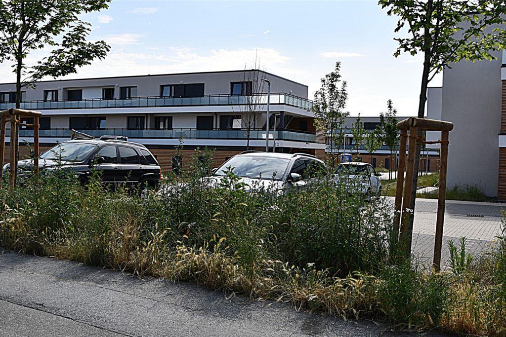 Früher fürchteten die Gäste die Holt Kreta, heute freuen sich Besucher über Gastgeber, die in schicken neuen Häusern wohnen.
