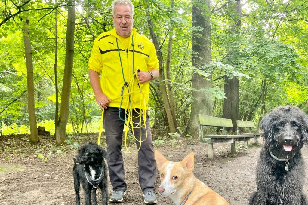 Ingo Schrade ist mit seinen beiden Hunden Amigo und Wilma unterwegs. Rechts im Bild sitzt Manni.