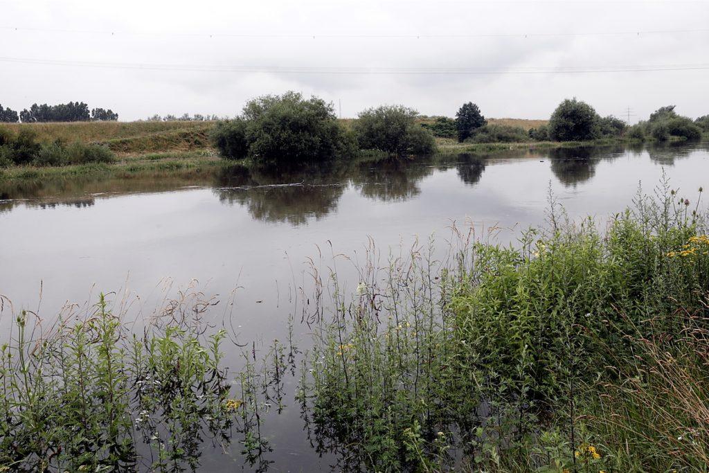 Beim Lippranmsdorf breitet sich die Lippe wieder deutlich aus.